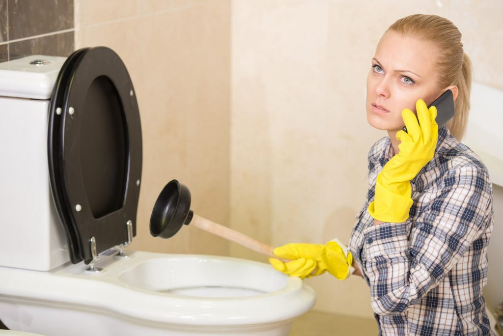 how-to-drain-a-toilet-yourself